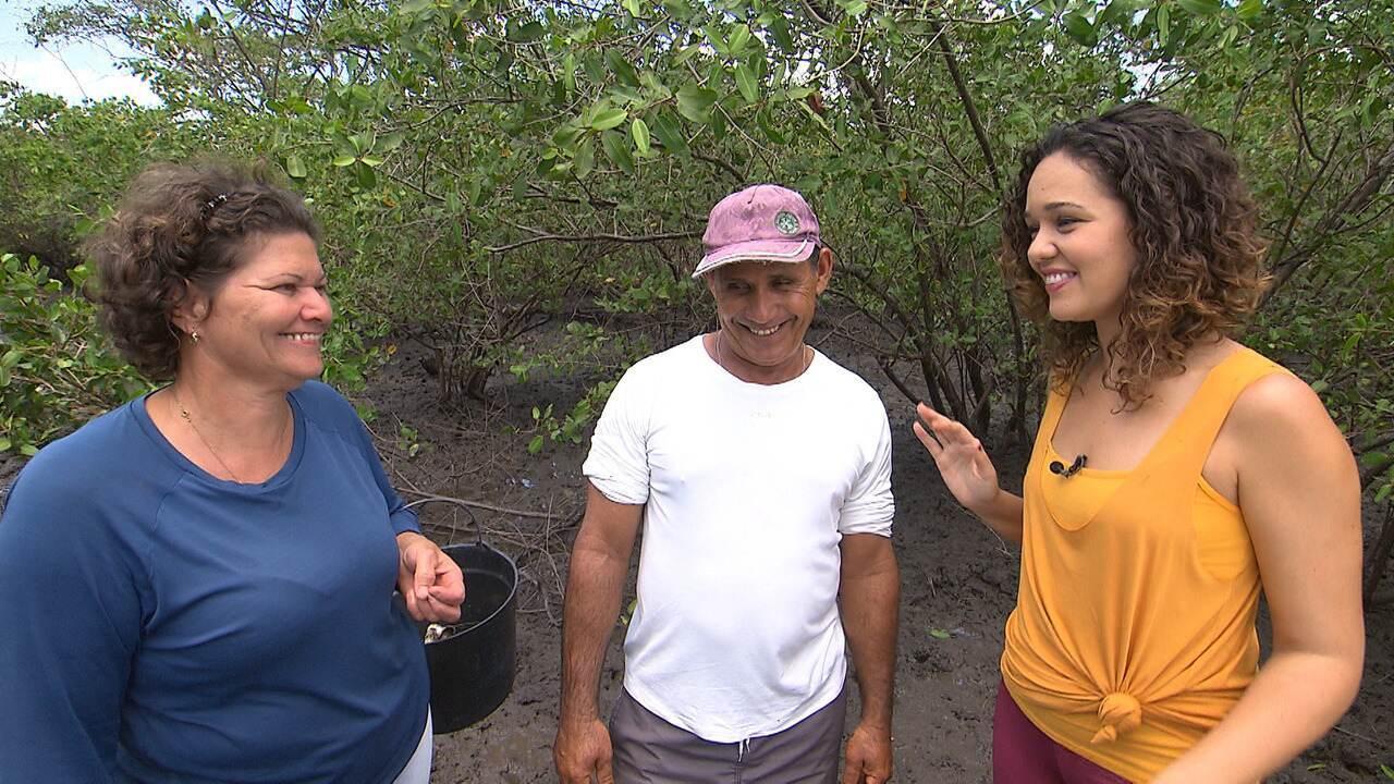 Em Maragojipe, projeto Vovó do Mangue preserva manguezais
