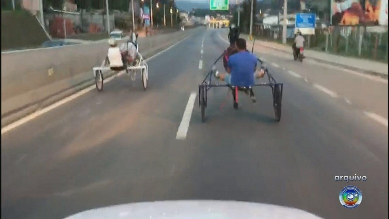 Polícia Civil recebe laudo sobre vídeo de racha com charretes de cavalo em Mairinque