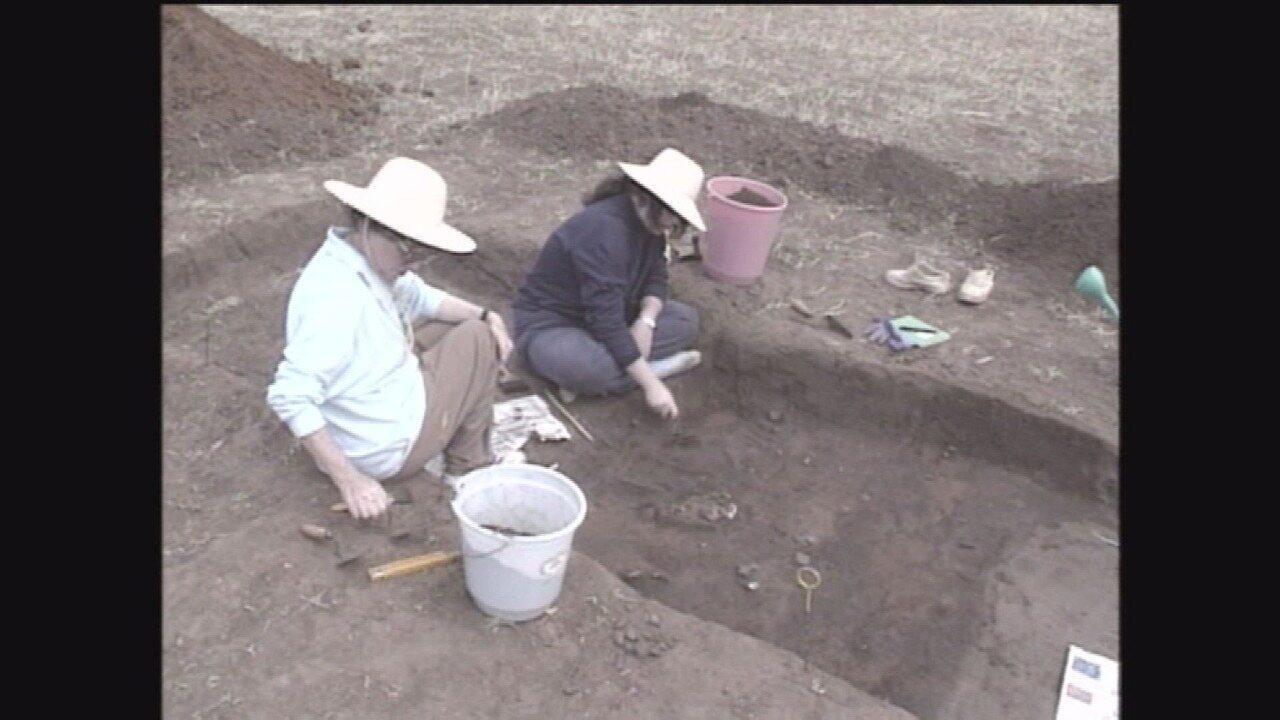 Monte Alto - Terra dos Dinossauros: arqueólogos acham vestígios de índios pré-históricos
