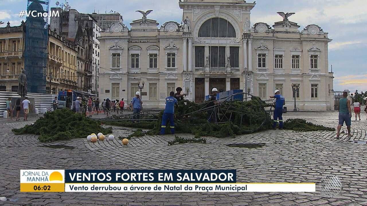 Vento forte derruba árvore de Natal da Praça Municipal de Salvador