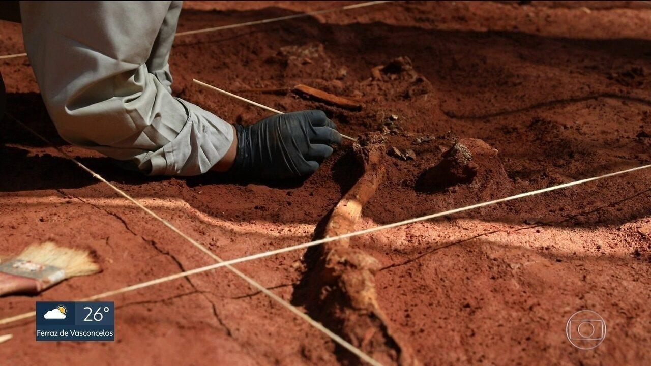 Arqueólogos encontram ossadas durante demolição de prédio na Liberdade
