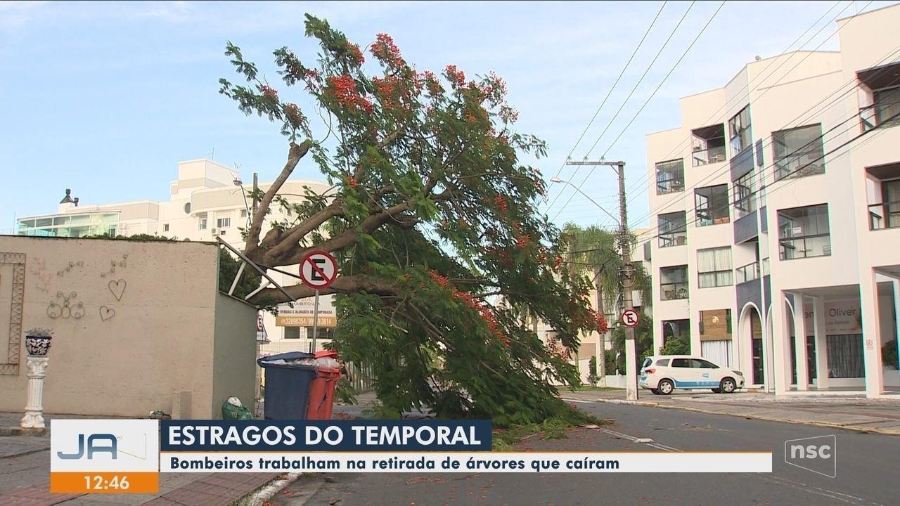 Temporal destelha casas e deixa bairros sem energia em Florianópolis