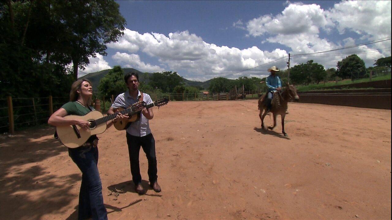 Toque da viola acompanha batida de casco de mulas e cavalo