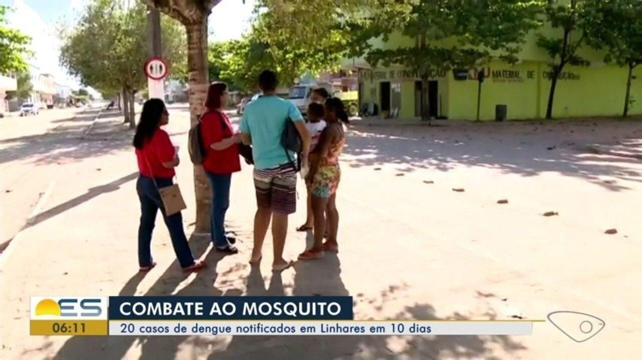Linhares tem registrado dois casos de dengue por dia no verão de 2019