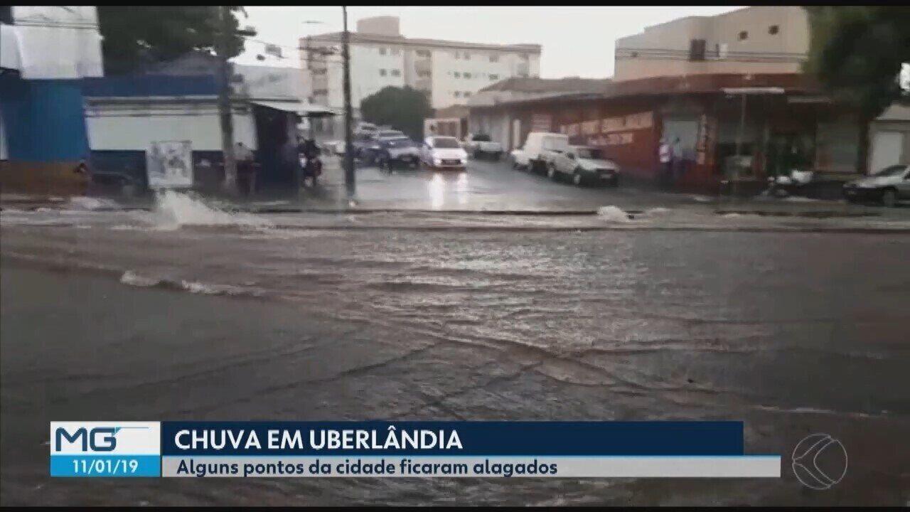 Alagamentos e queda de árvores ocorrem em Uberlândia durante chuva