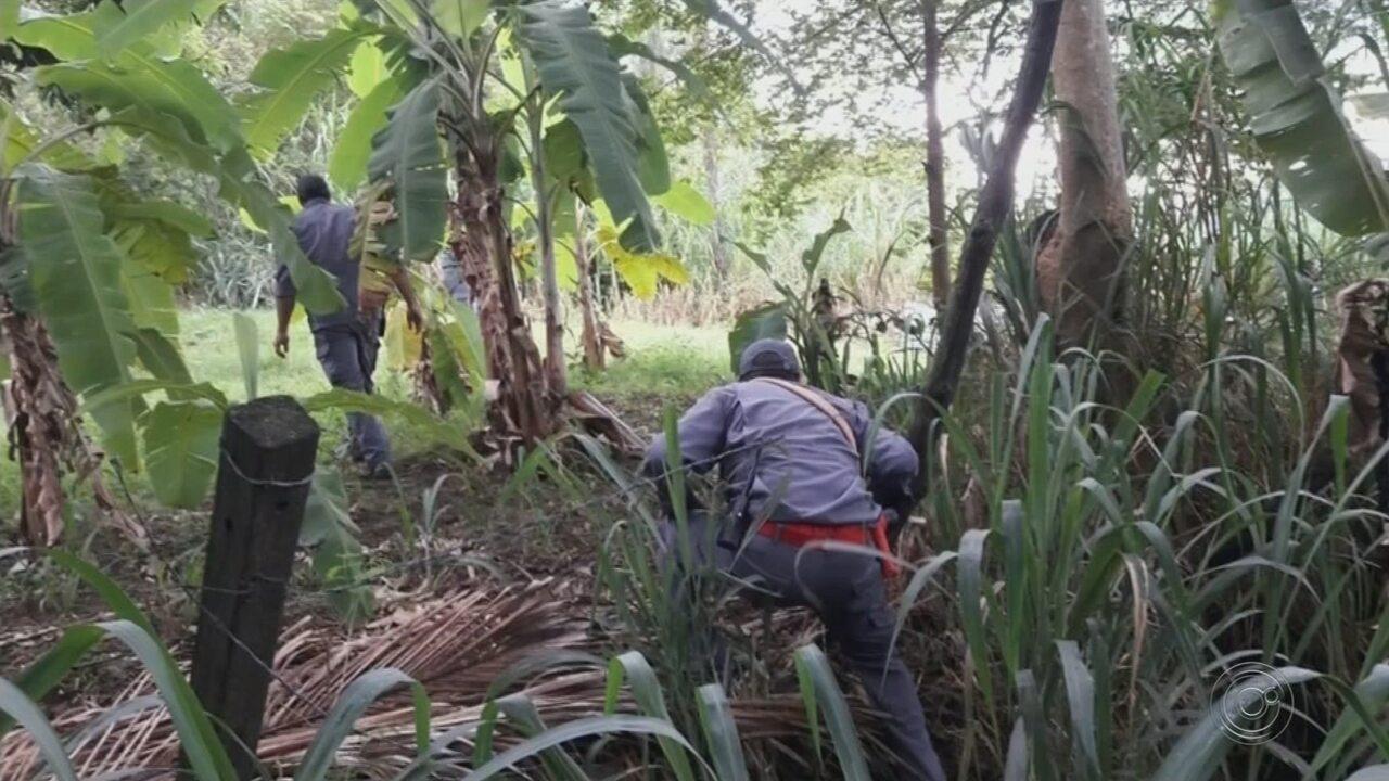 Corpo de jovem é encontrado pelos bombeiros em Marília