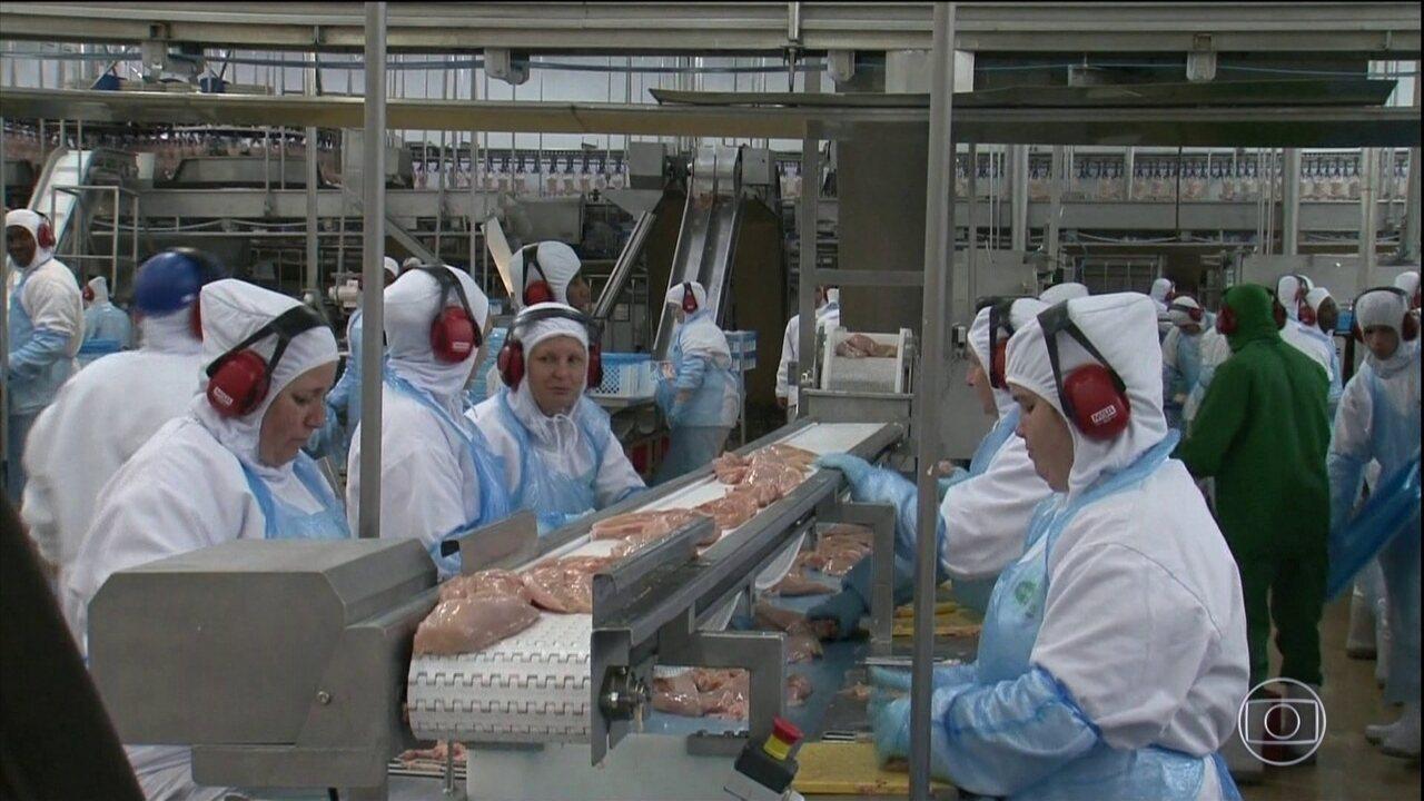 Arábia Saudita barra importação de frangos de 5 frigoríficos brasileiros