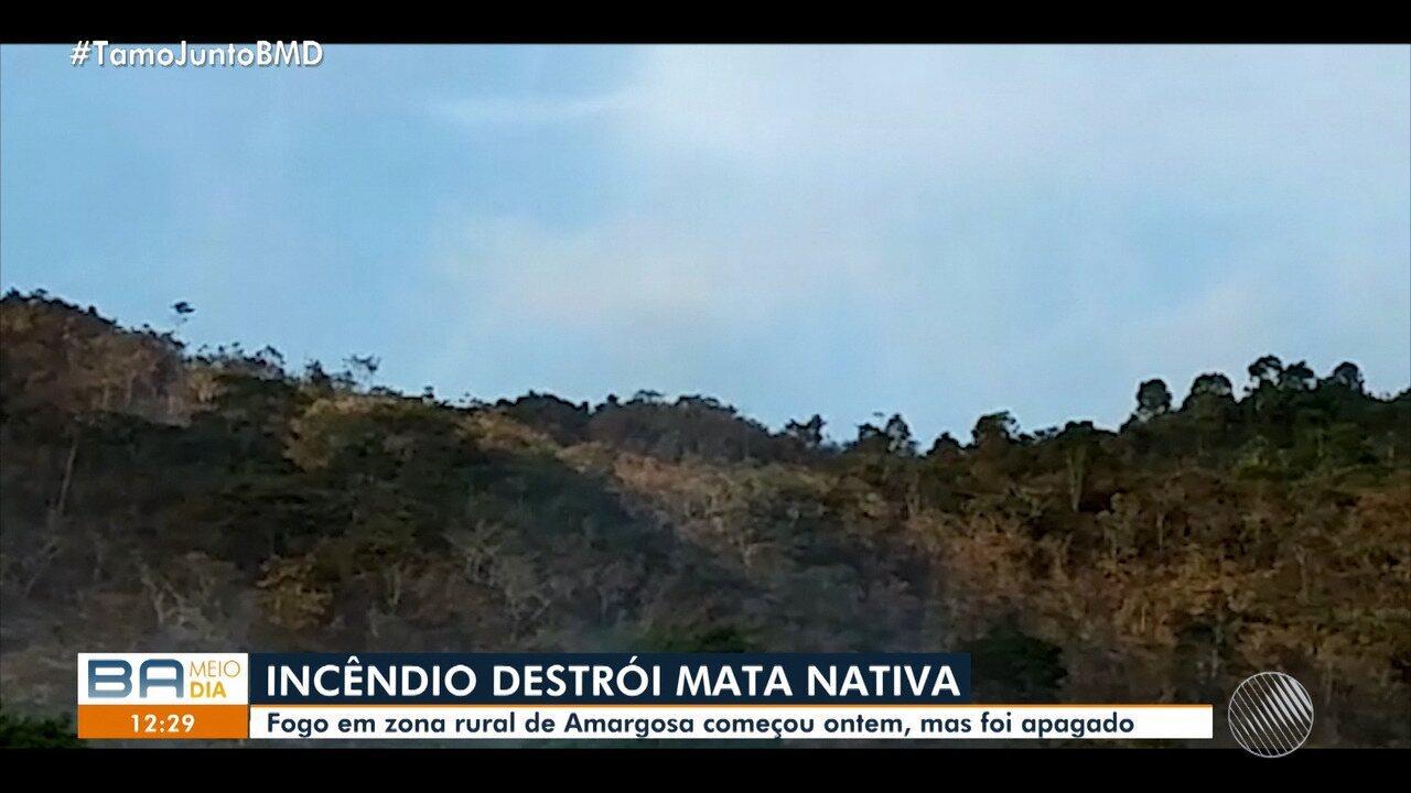 Incêndio destrói mata nativa na cidade de Brejões