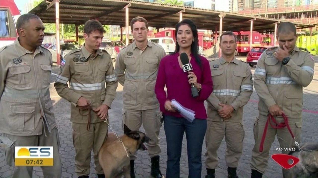 Equipe capixaba que atuou nas buscas em Brumadinho recebe homenagem no ES