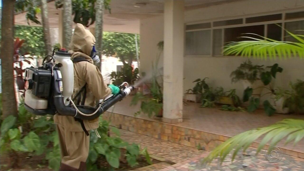 Com mais de 80 casos, Neves Paulista reforça medidas para combater a dengue