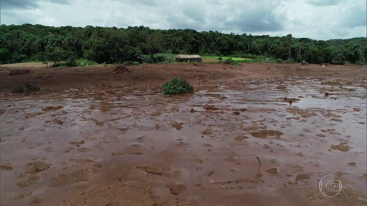 Depoimentos levam MP a afirmar que a tragédia em Brumadinho não foi acidente