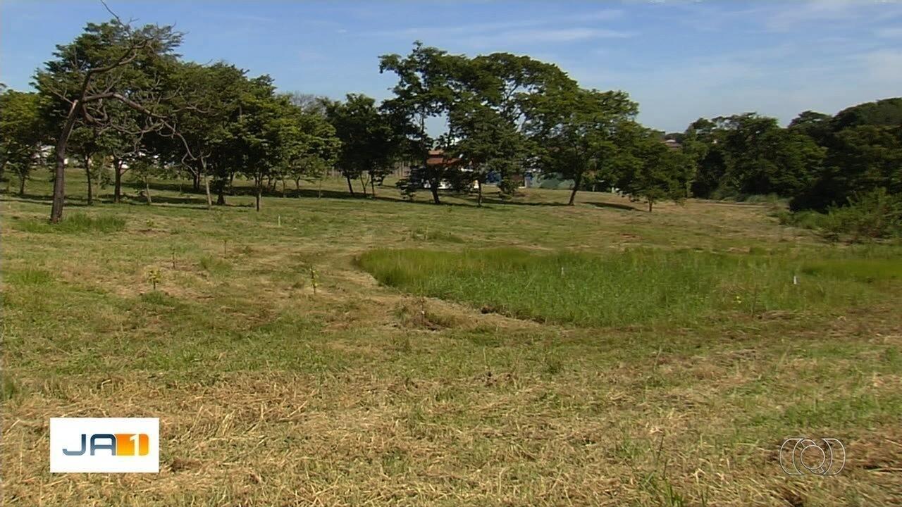 'Viver Cidade' chega ao Parque das Amendoeiras e deve realizar plantio de mudas