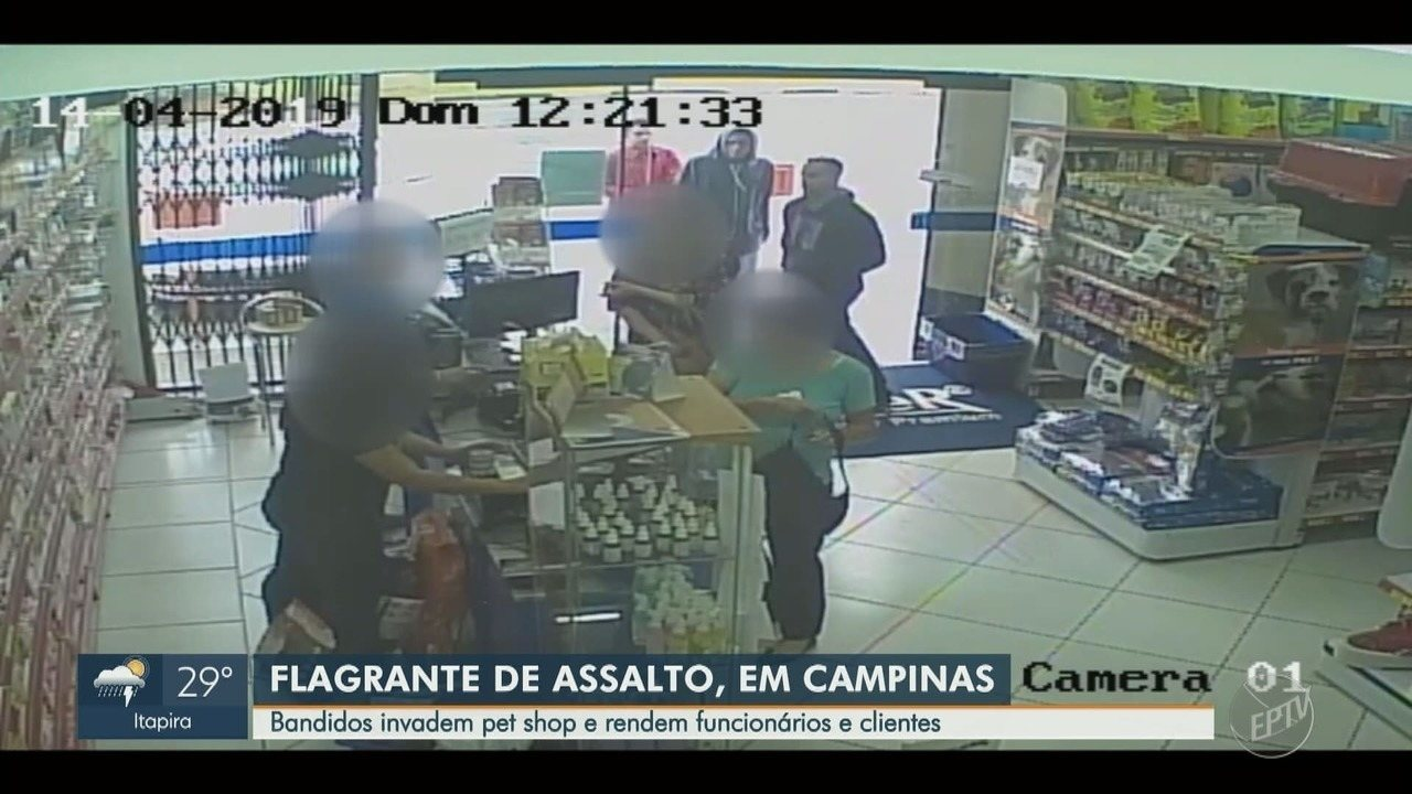 Bandidos rendem clientes e funcionários de pet shop no Cambuí, em Campinas