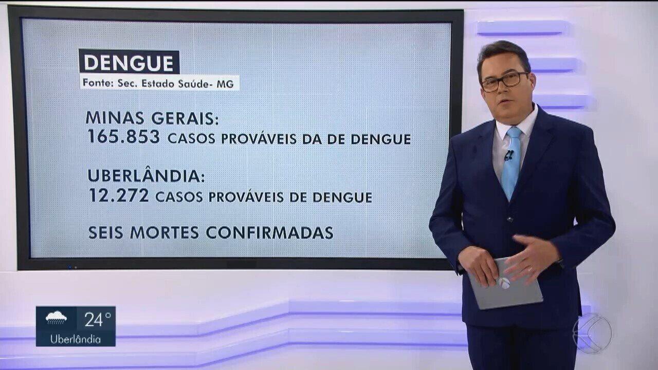 Oito mortes por dengue são confirmadas em Uberlândia neste ano