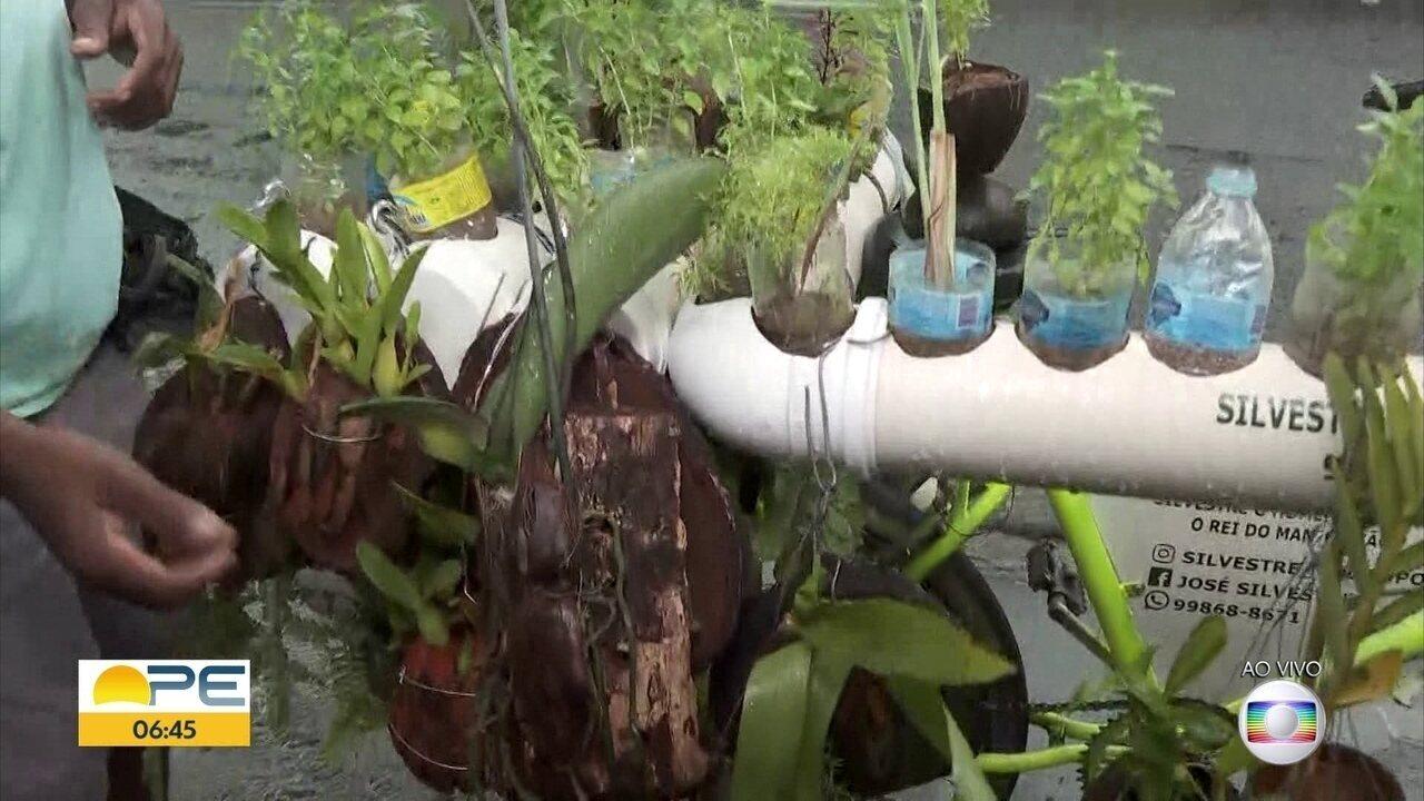 Agricultor cria 'horta ambulante' em bicicleta para vender plantas no Recife