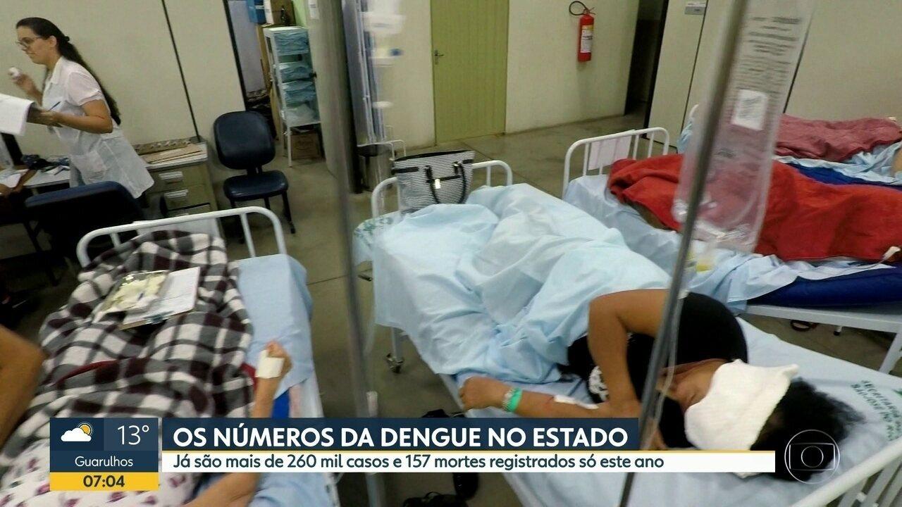 Balanço atualizado da dengue no estado de São Paulo: 267.602 casos e 157 mortes