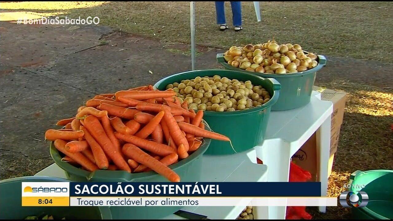Projeto troca materiais recicláveis por alimentos, roupas e plantas, em Goiânia