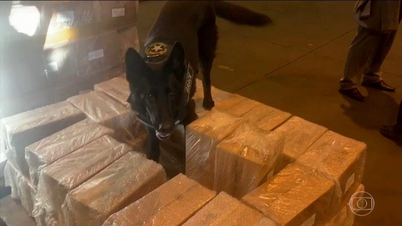 Receita Federal apreendeu 145 quilos de cocaína por dia neste ano