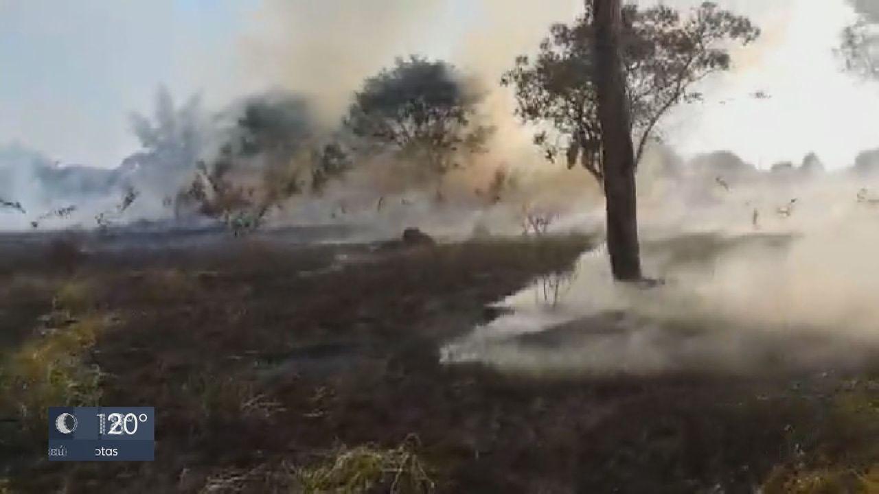 Incêndio atinge vegetação da Feena, em Rio Claro
