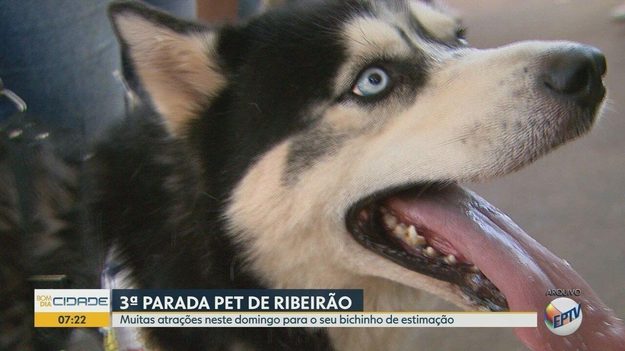 Parada Pet programa dia com atividades para toda a família em Ribeirão Preto