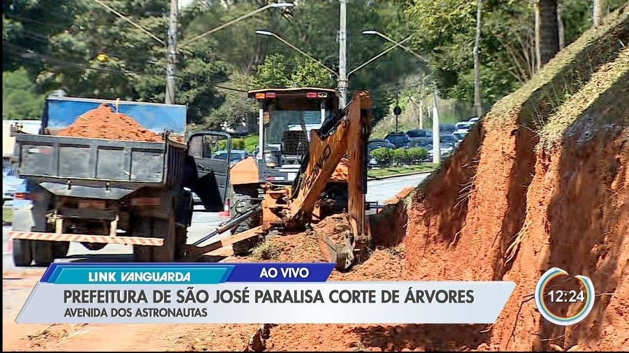 Após alerta, prefeitura de São José suspende corte de árvore em traçado de nova ciclovia