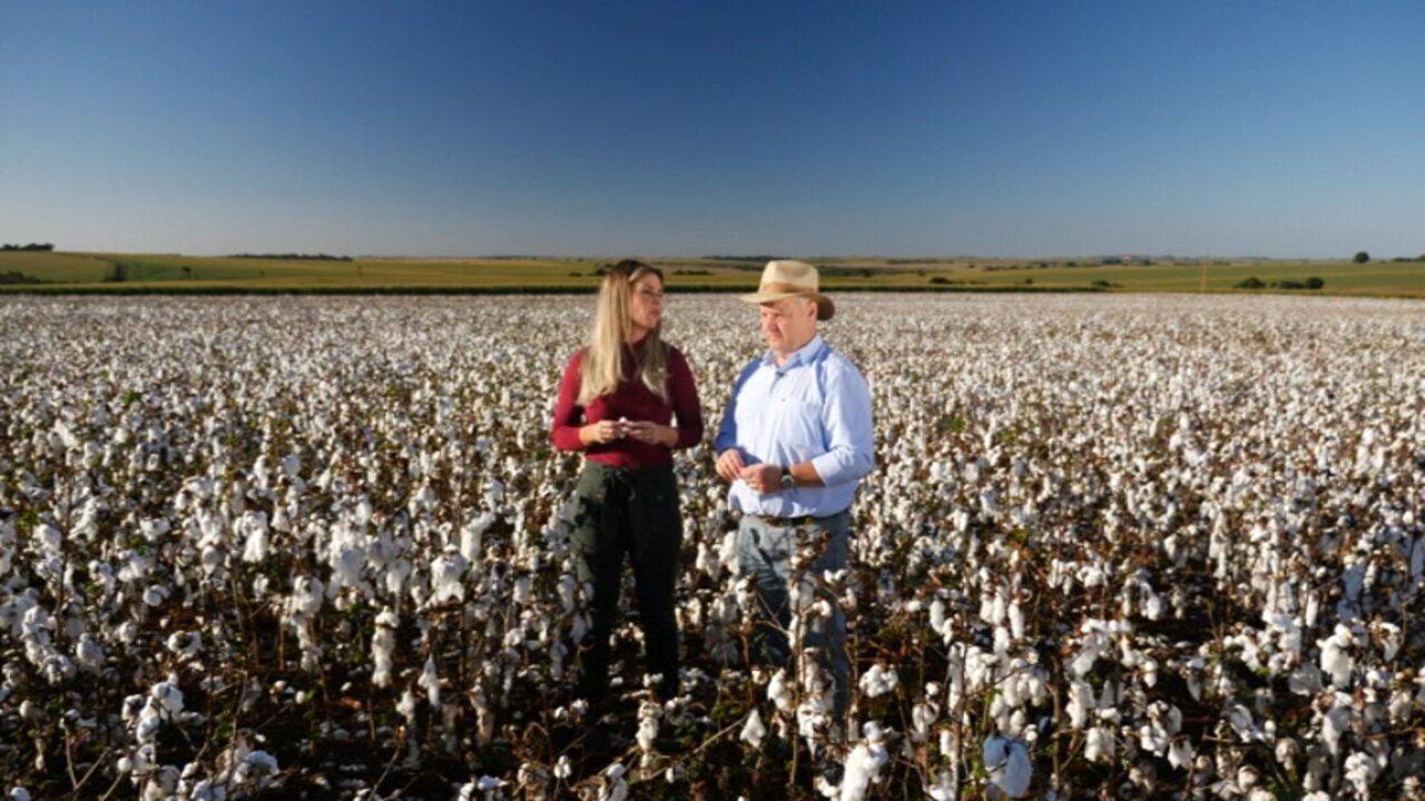 Daiane Fardin mostra como é feita a produção de algodão no Paraná