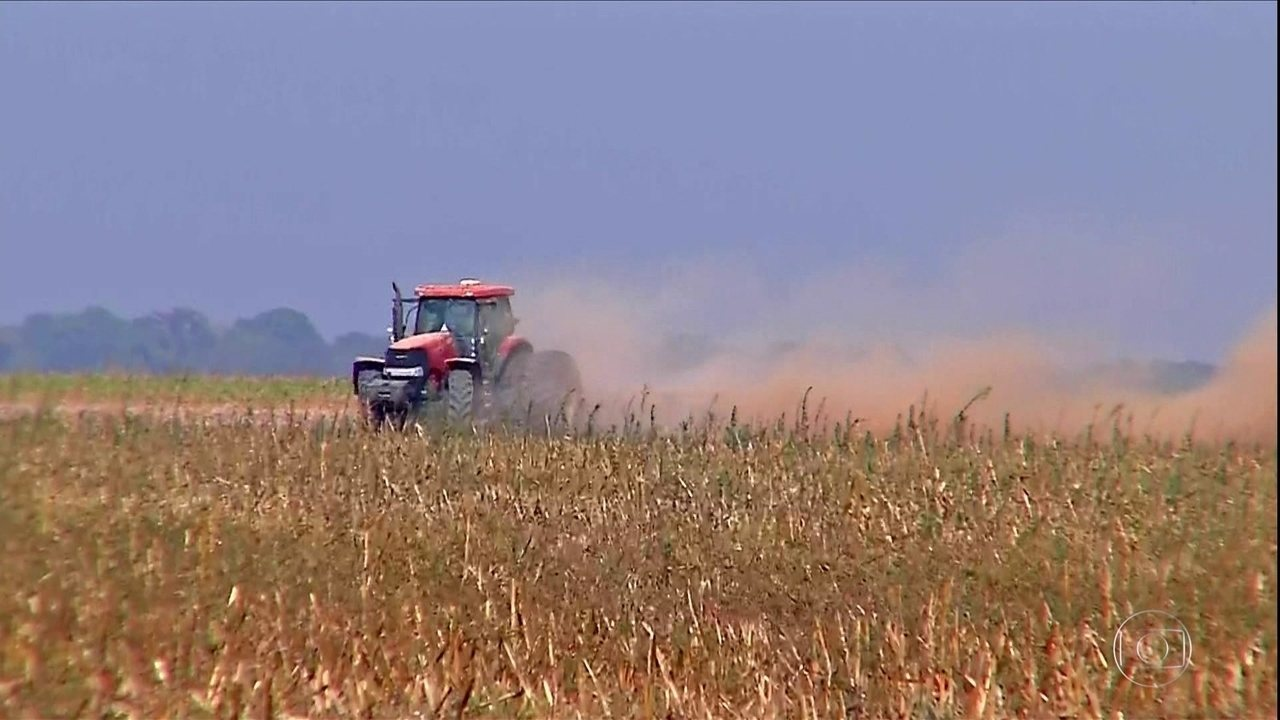 Pequenos e médios produtores de soja de MT estão com dificuldades para pagar as dívidas