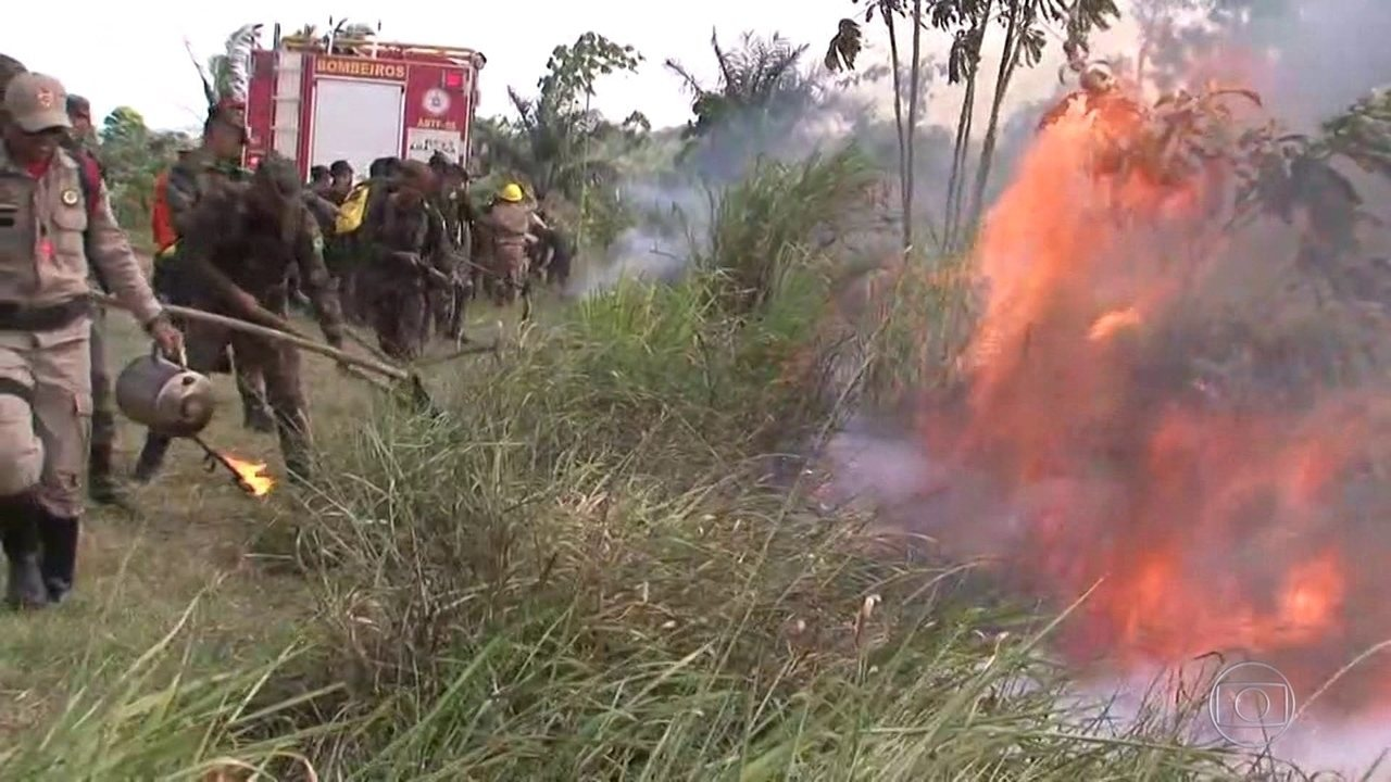 Bombeiros especializados no combate a incêndios florestais chegam à Amazônia