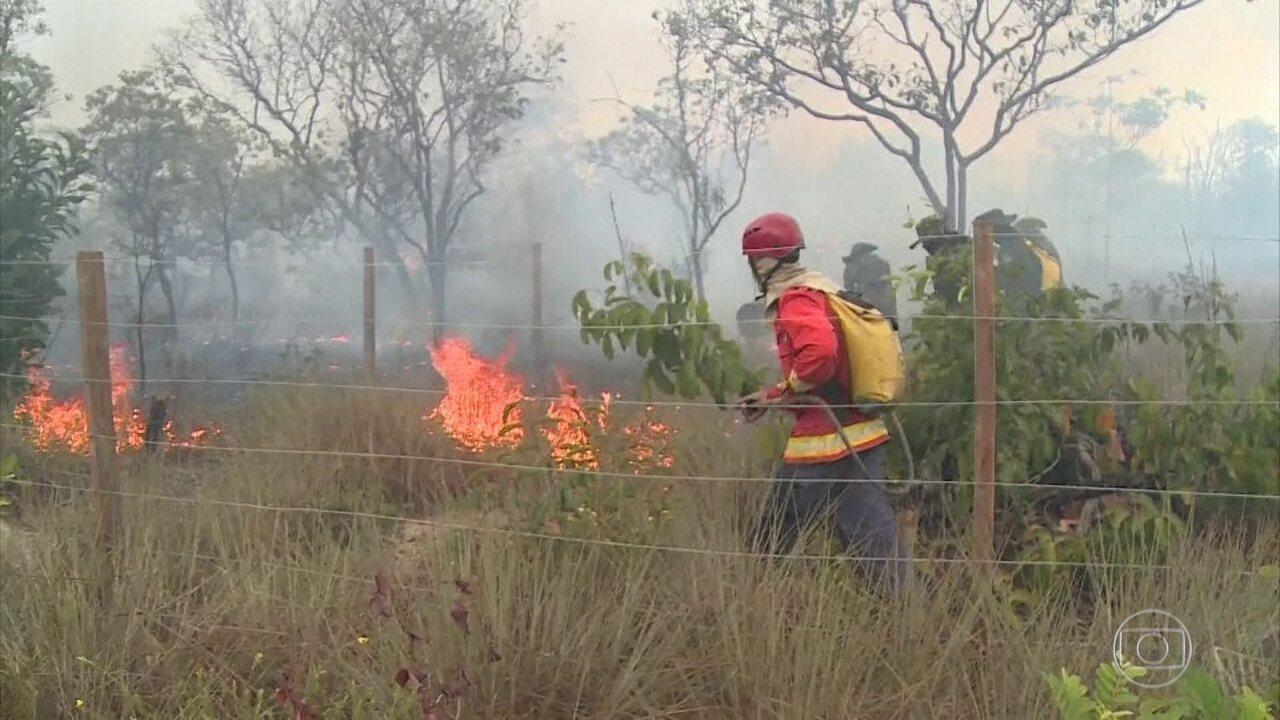 Polícia do Pará investiga causas de incêndio em Alter do Chão