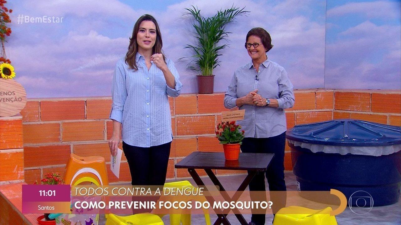 Campanha de combate à dengue é antecipada; Brasil registra mais de 1,4 milhão de casos