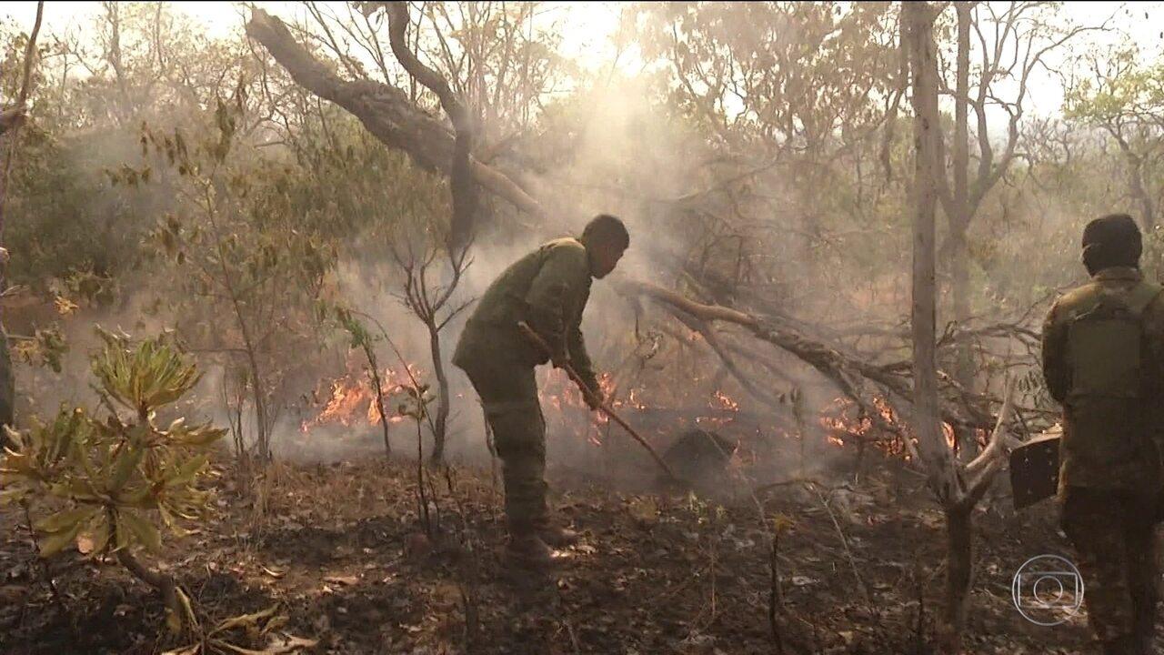 Em setembro, Cerrado teve mais focos de queimadas do que Amazônia