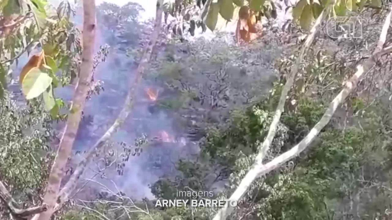 Incêndio florestal atinge parque com pinturas rupestres em Monte Alegre, no Pará