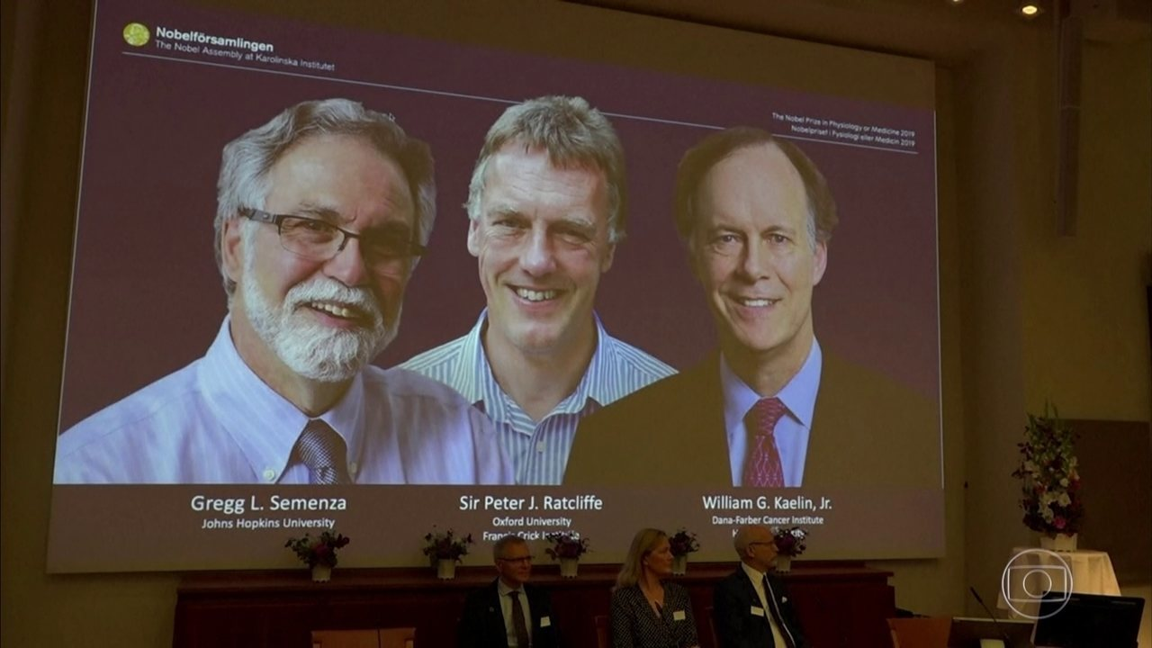 Três cientistas ganham prêmio Nobel de Medicina