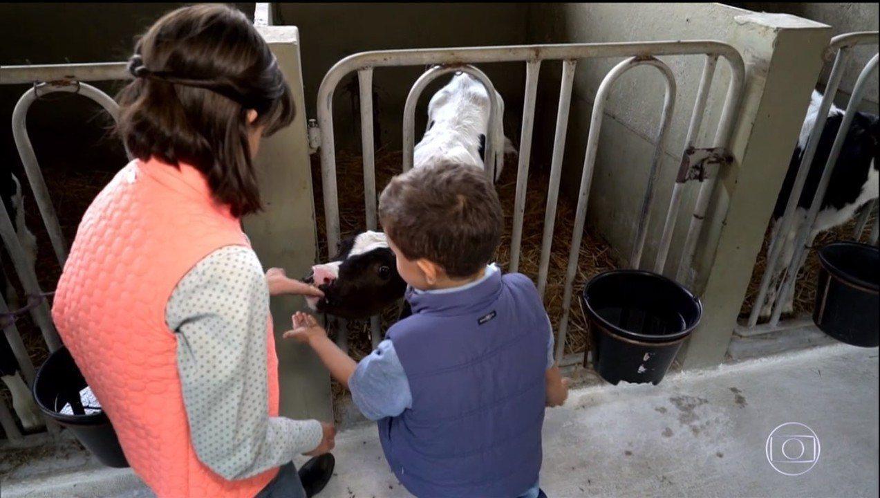 Globo Rural – Edição de 27/10/2019 - Programa mostra o 'clube' que vem garantindo a sucessão familiar na produção de leite do Paraná. E mais notícias do campo. Tem o roubo de insumos em Mato Grosso, as exportações de frutas no Vale do São Franscisco e mais notícias do campo.