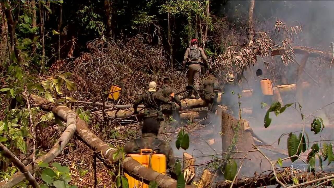 Inpe anuncia que Amazônia teve outubro com menor número de queimadas em 21 anos