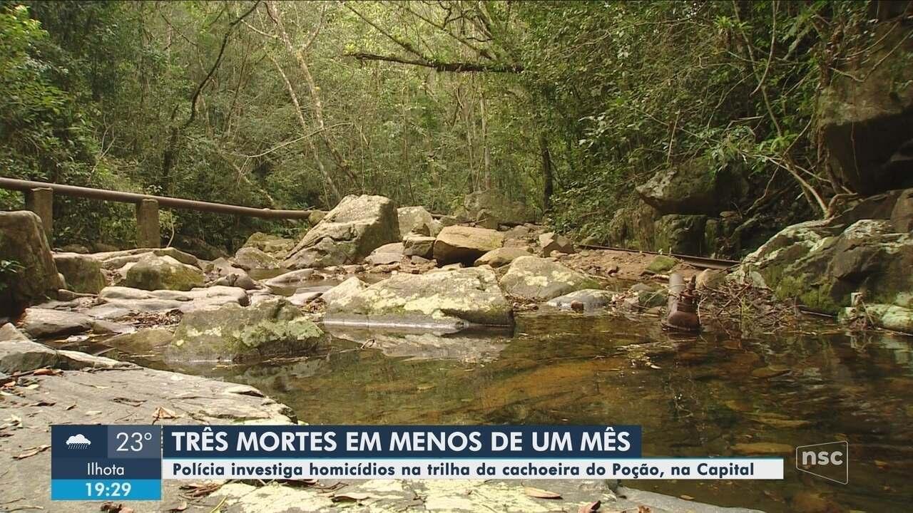 Polícia investiga homicídios na trilha do Poção, no Córrego Grande, em Florianópolis