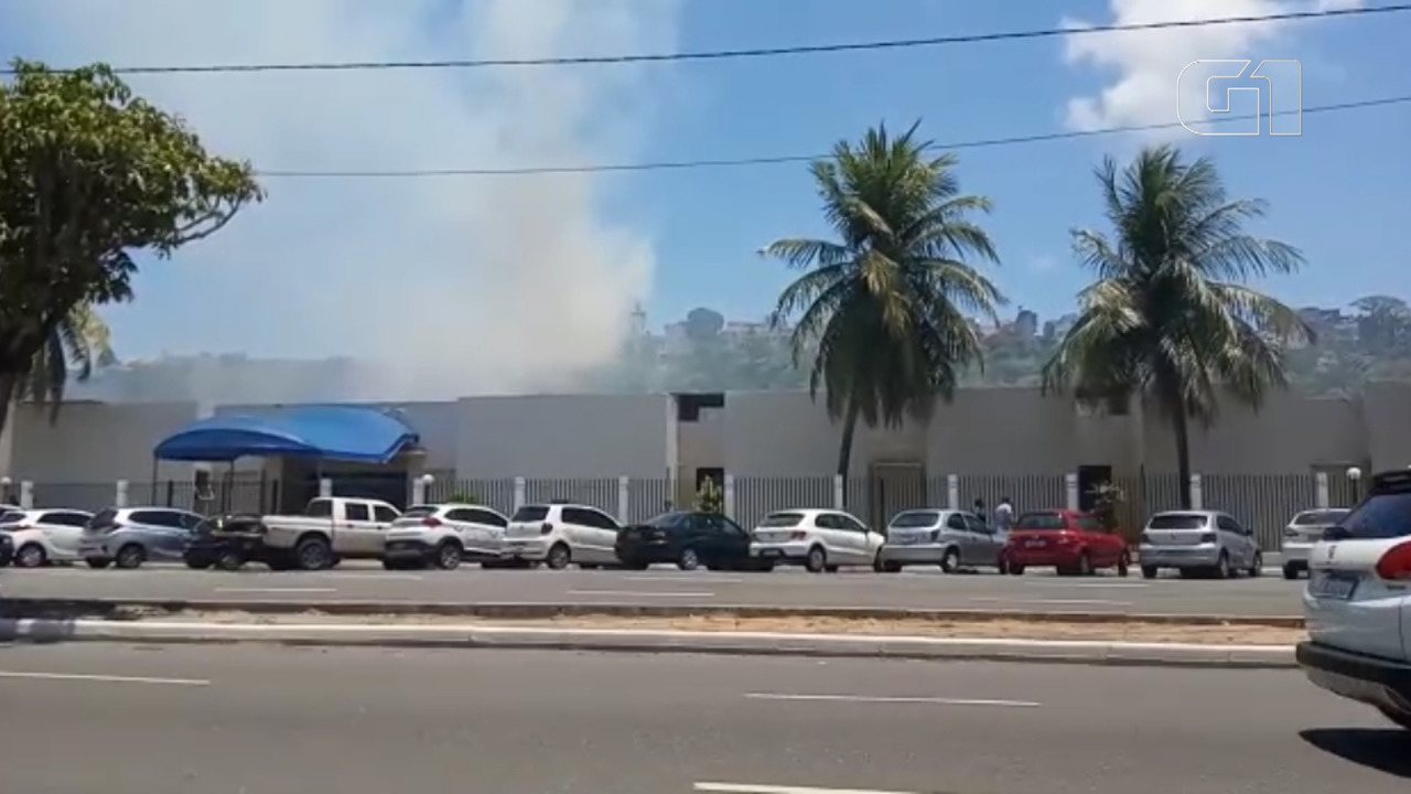 VÍDEO: Incêndio atinge vegetação no Santo Antônio Além do Carmo