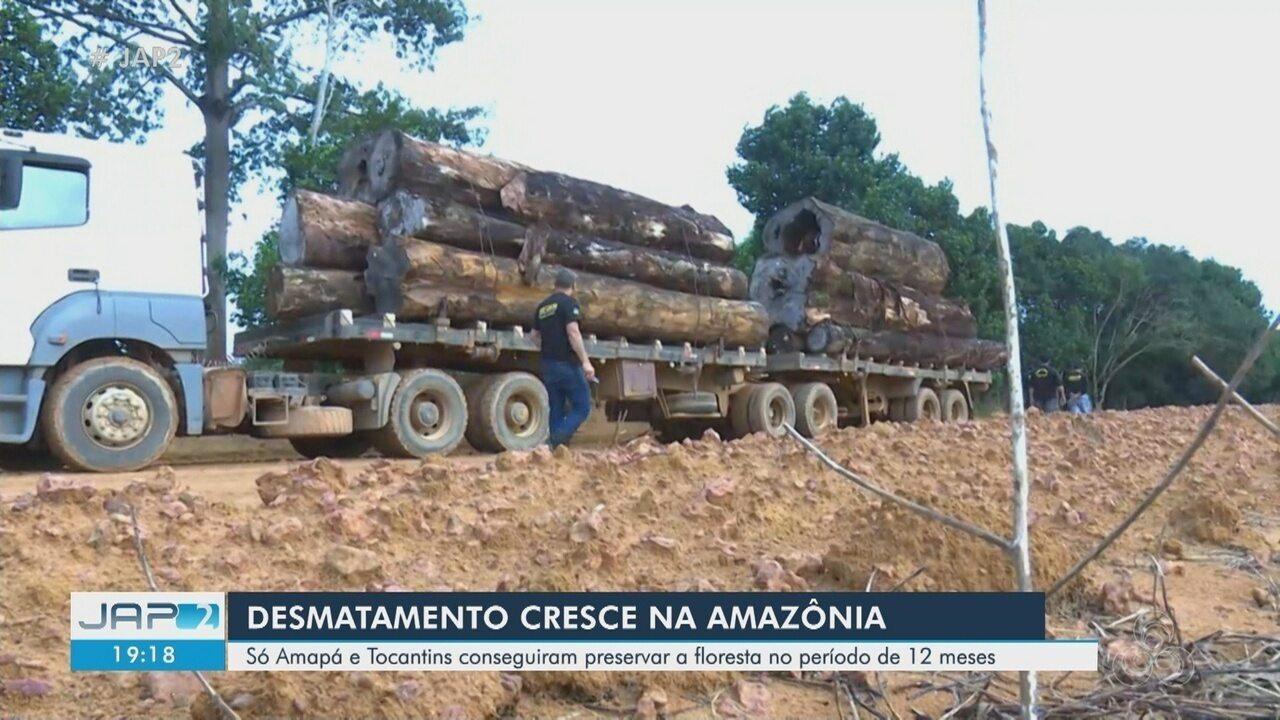 Amapá registra menor área desmatada da Amazônia em 1 ano, segundo Inpe