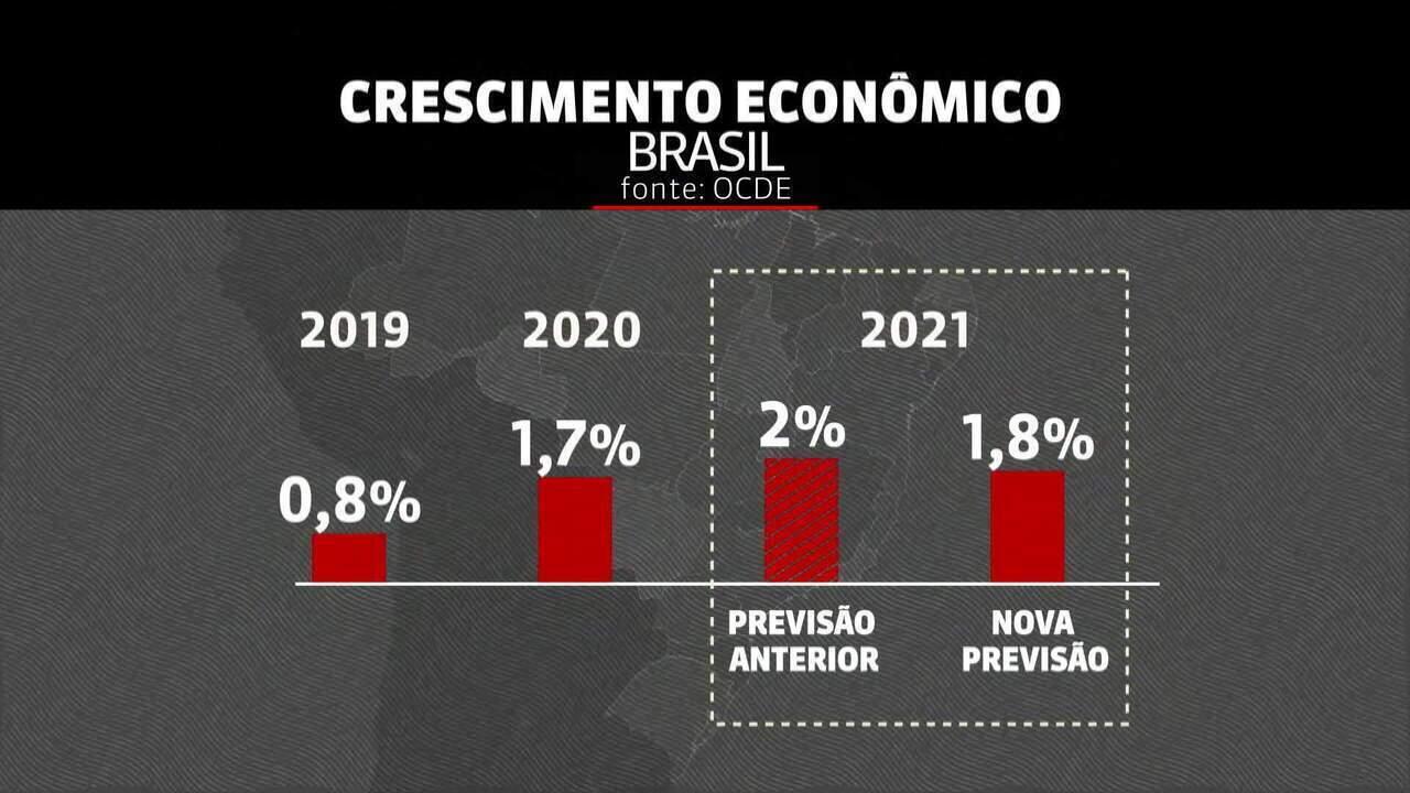 OCDE reduz previsão de crescimento da economia mundial; entenda