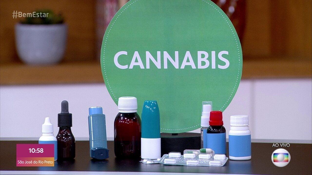 Cannabis: entenda como será a venda dos produtos