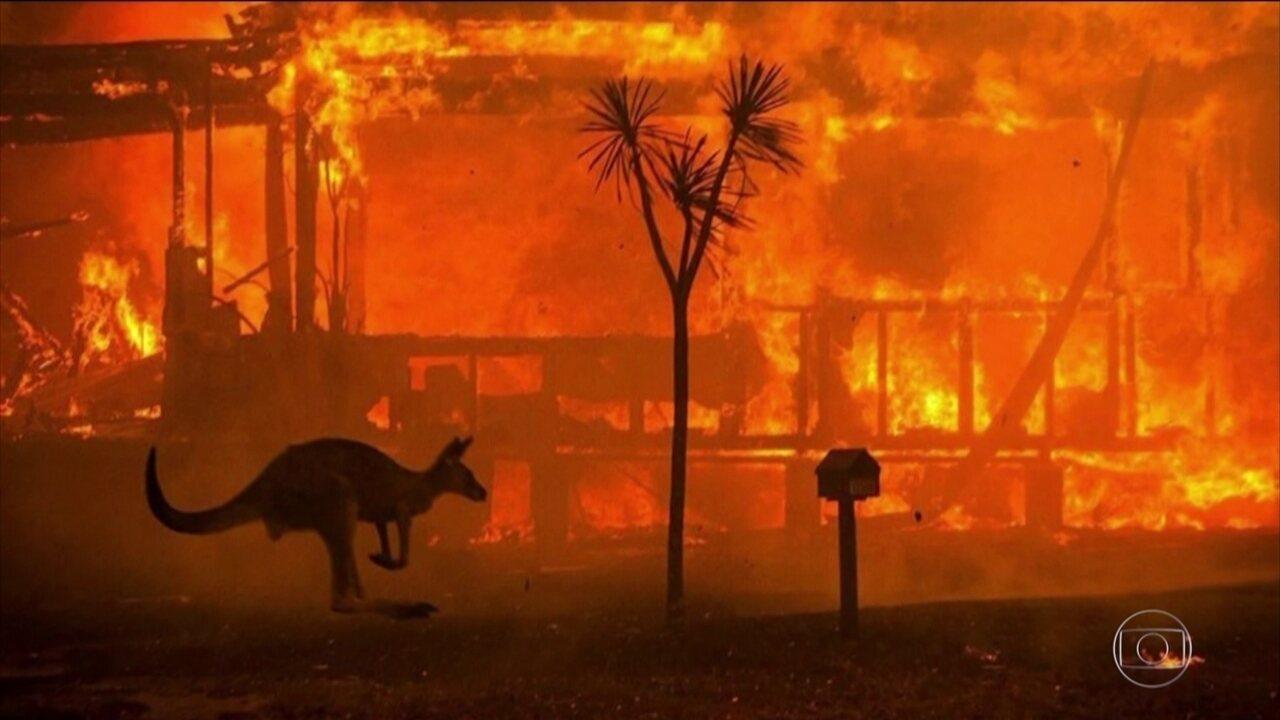 Governo da Austrália registra 25 mortos em incêndios florestais