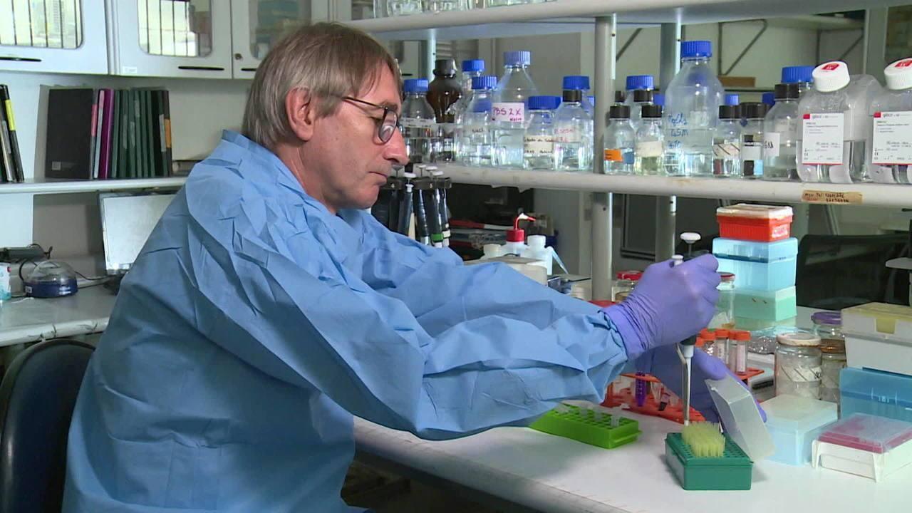 Fiocuz terá laboratório para pesquisas na Antártica