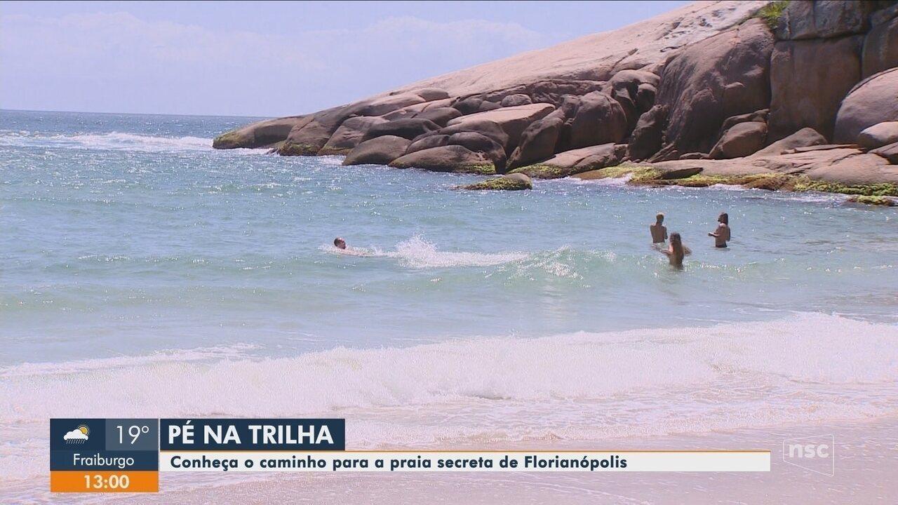 Quadro 'Pé na Trilha': Conheça o caminho para a praia secreta de Florianópolis