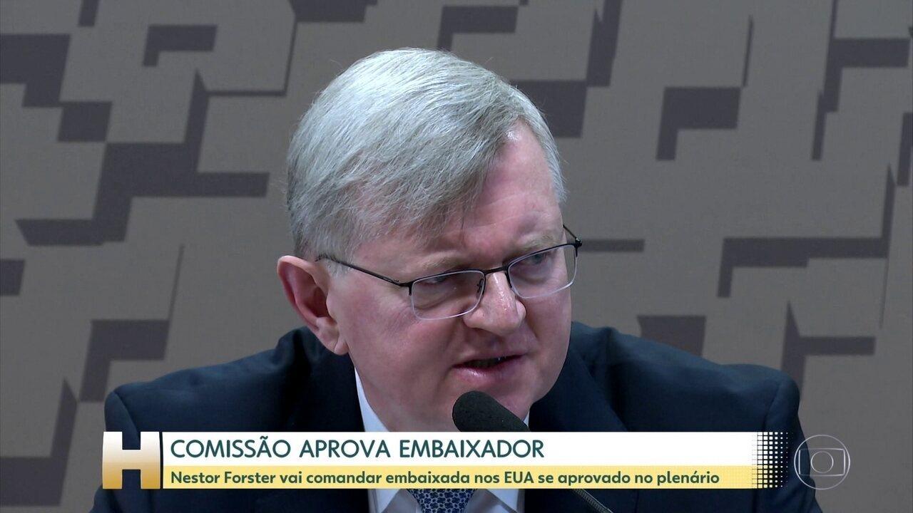Comissão do Senado aprova indicação de Nestor Forster para embaixada dos EUA
