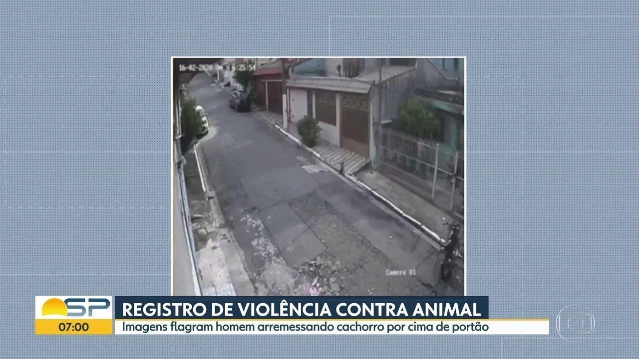 Homem arremessa cachorro por cima do portão