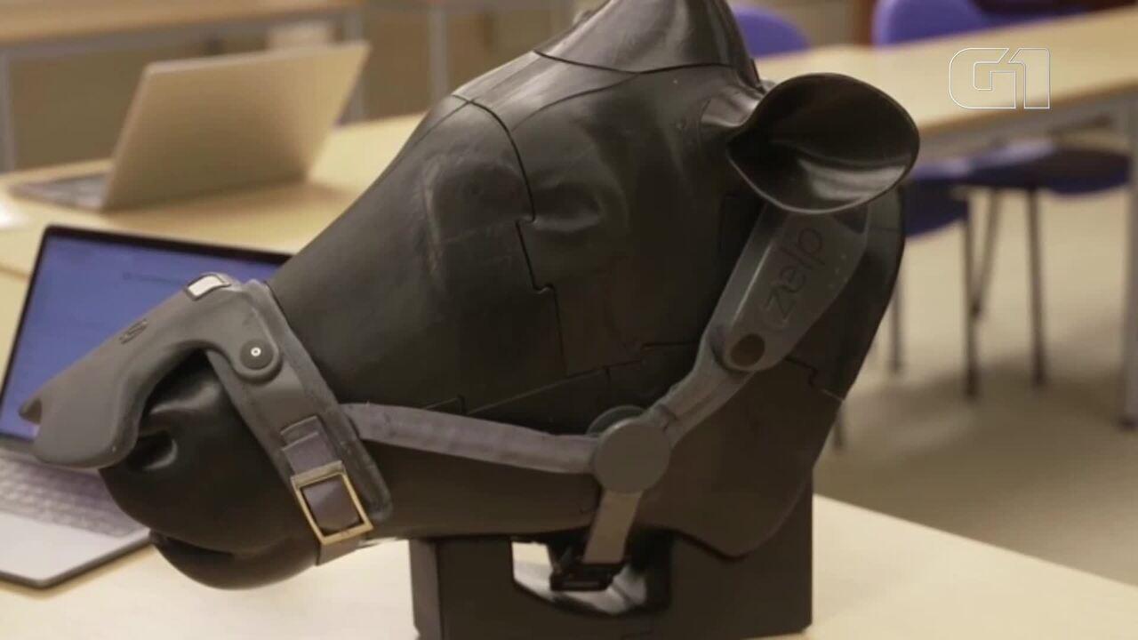 Empresa inglesa cria aparelho que captura gás metano produzido pelo arroto de vacas