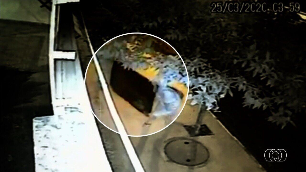 Cinco homens furtam casa em Jataí