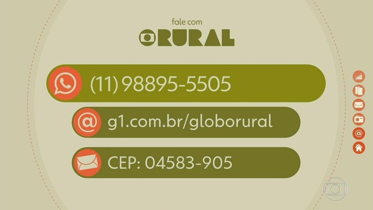 Saiba como entrar em contato com o Globo Rural pelo WhatsApp