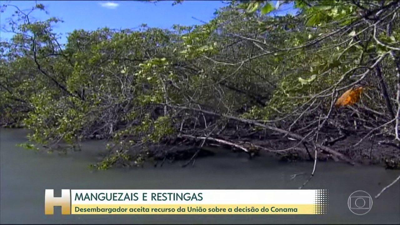 Justiça restabelece decisões do Conama, que retiraram proteção de manguezais e restingas