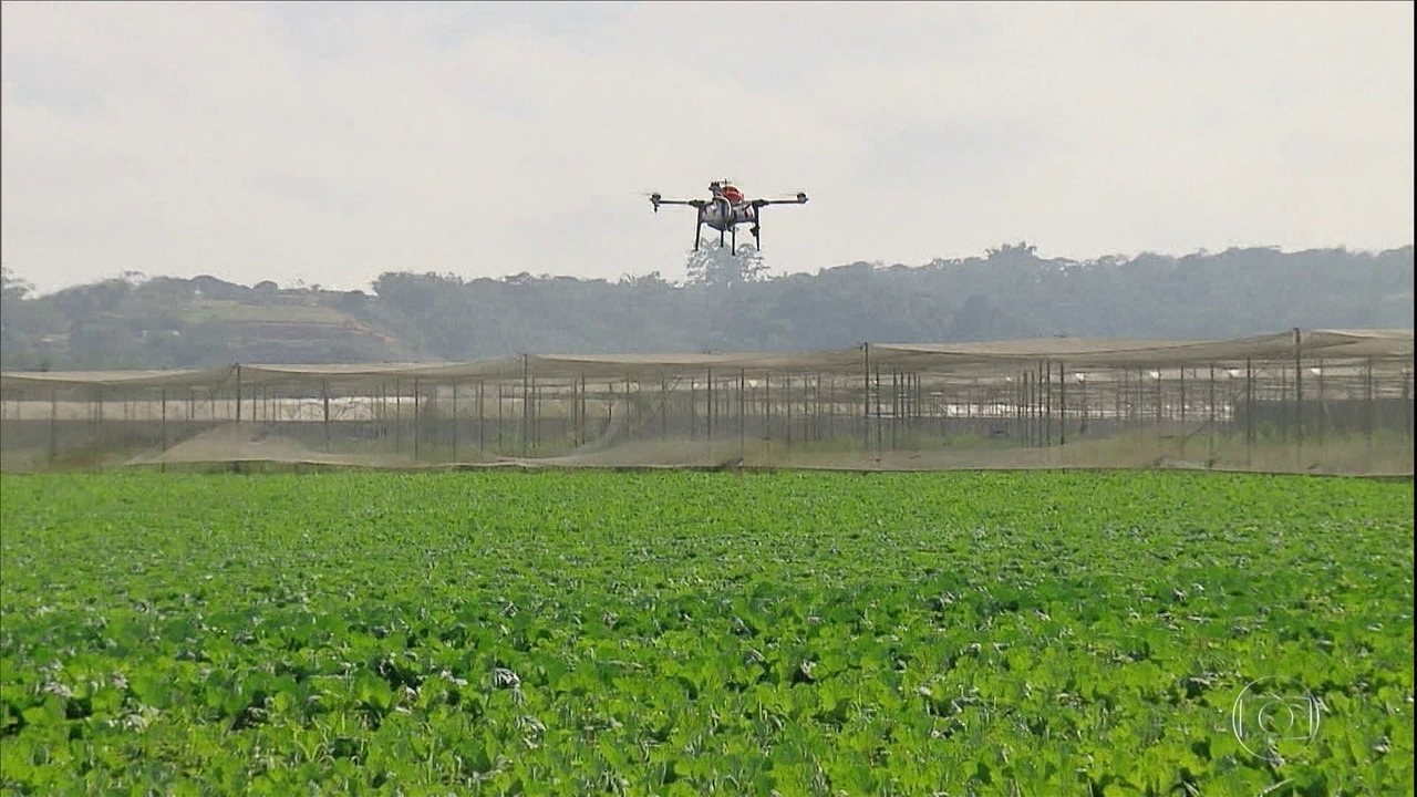 Tecnologia permite ampliar a aplicação de defensivos biológicos nas lavouras por drones
